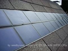 Green Roof News