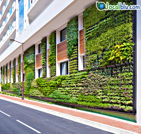 Technology Management Image: More Green Buildings