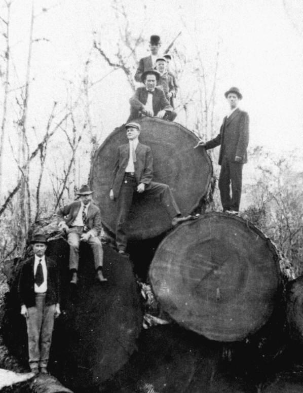 Historic Reclaimed Wood